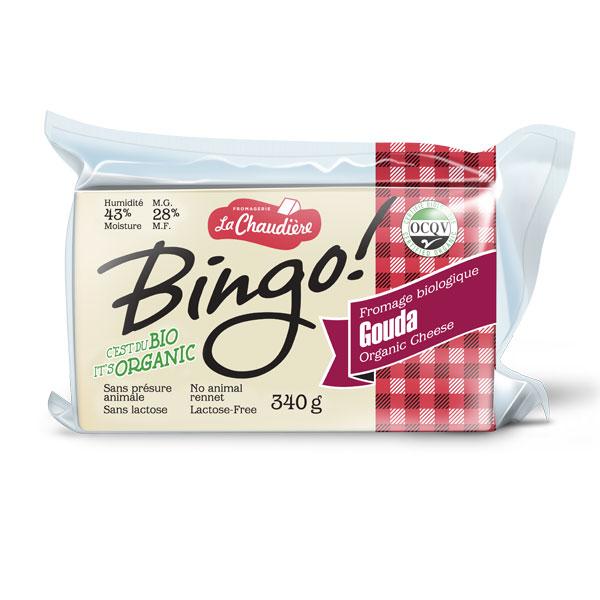 bingo-gouda
