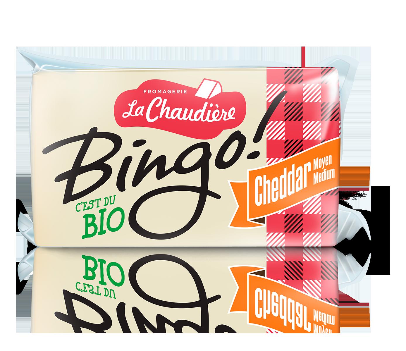 Bingo_Cheddar_med_accueil